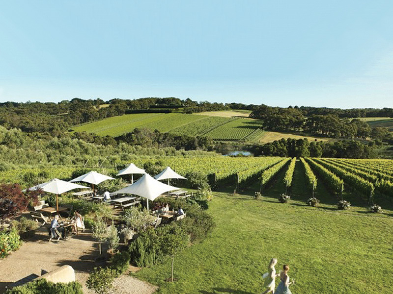 5 Hidden Treasures to Discover on the Mornington Peninsula